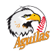 Equipo Aguilas del Zulia